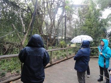 sol, chuva, lá estávamos