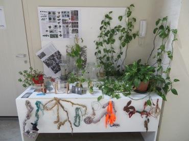 Projeto sobre raízes